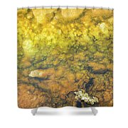 Thermal Pool I Shower Curtain