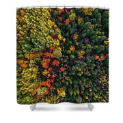 These Are Trees Shower Curtain