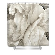 These Flowers Will Never Fade Shower Curtain