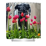 These Tulips Are For You Shower Curtain