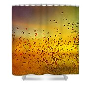 They Call Me Fall Shower Curtain by Mary Hood