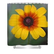 They Call Me Mellow Yellow. Shower Curtain