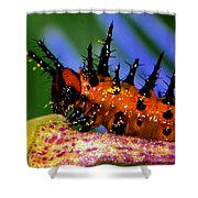 They Call Me Spike 003 Shower Curtain