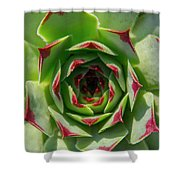 Thick Lashes Shower Curtain