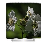 Thimbleberry Blossoms Shower Curtain