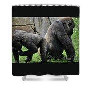 Thinking Gorilla Shower Curtain