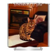 Thinking Of You - Bengal Cat Shower Curtain