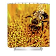 The Bee Is A Little Pig Shower Curtain