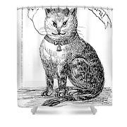 This Is My Book, Miau-u-u, 1859 Shower Curtain