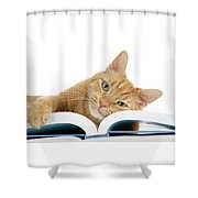 This Tabby Cat Loves Books  Shower Curtain
