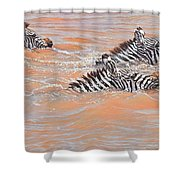 This Way Son Shower Curtain by Alan M Hunt
