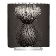 Thistle 3 Shower Curtain