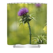 Thistle And Mustard Shower Curtain