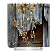 Thistle And Wood Shower Curtain