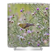 Thistle Bender Shower Curtain