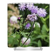 Thistle Flower Shower Curtain