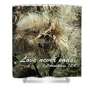 Thistle In Seed Shower Curtain
