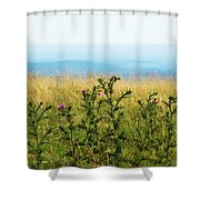 Thistle On The Blue Ridge Shower Curtain