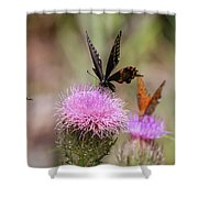 Thistle Pollinators - Large And Small Shower Curtain