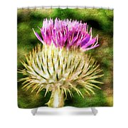 Thistle - The Flower Of Scotland Watercolour Effect. Shower Curtain