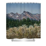 Thistledown In The Valley Shower Curtain