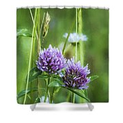 Clover And Daisies Shower Curtain