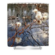 Thistles And Geese  Shower Curtain