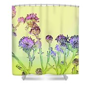 Thistles Under The Sun Shower Curtain