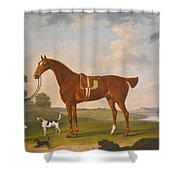 Thomas Egerton's Chestnut Hunter With A Groom And Two Hounds And A Terrier In A River Landscape Shower Curtain