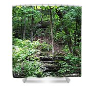 Thorncrown Chapel Setting In The Ozark Mountains Shower Curtain