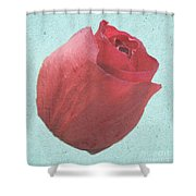 Thornless Shower Curtain