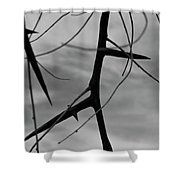 Thorns In Silouette Shower Curtain
