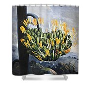 Thornton: Aloe Shower Curtain