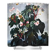 Thornton: Begonia Shower Curtain