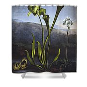 Thornton: Bog Plants Shower Curtain