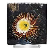 Thornton: Cereus Shower Curtain