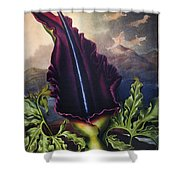Thornton: Dragon Arum Shower Curtain
