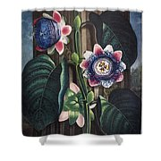 Thornton: Passion-flower Shower Curtain by Granger