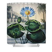 Thornton: Water Lily Shower Curtain