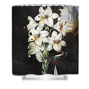 Thornton: White Lily Shower Curtain