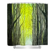 Though The Forest To The Light  Shower Curtain
