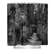 Though We Have Never Been Here Shower Curtain