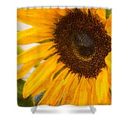 Thoughts Of Autumn Shower Curtain