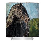 Thoughts Of Friesians Shower Curtain