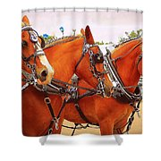 Three Abreast  Shower Curtain