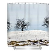 Three Apples Shower Curtain