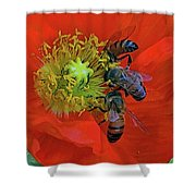 Three Bees At Lunch Shower Curtain