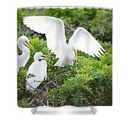 Three Birds Of A Feather Flock Together Shower Curtain