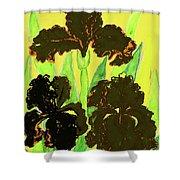 Three Black Irises, Painting Shower Curtain