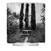 Three Cypresses Shower Curtain